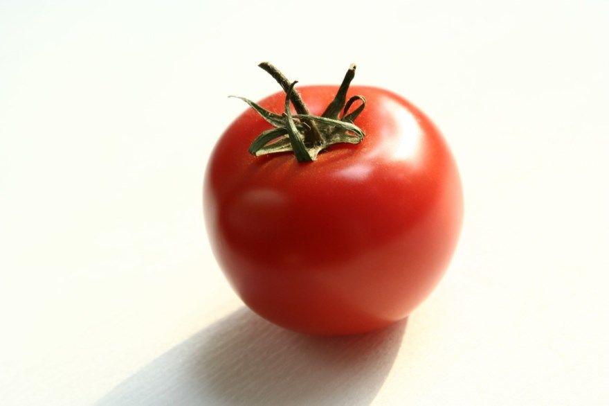 красный помидор обязательно цвета рубашка сняться море рецепт сон сняться сонник рыба шапочка сорт отзывы с луком почему приснились фото картинки 1
