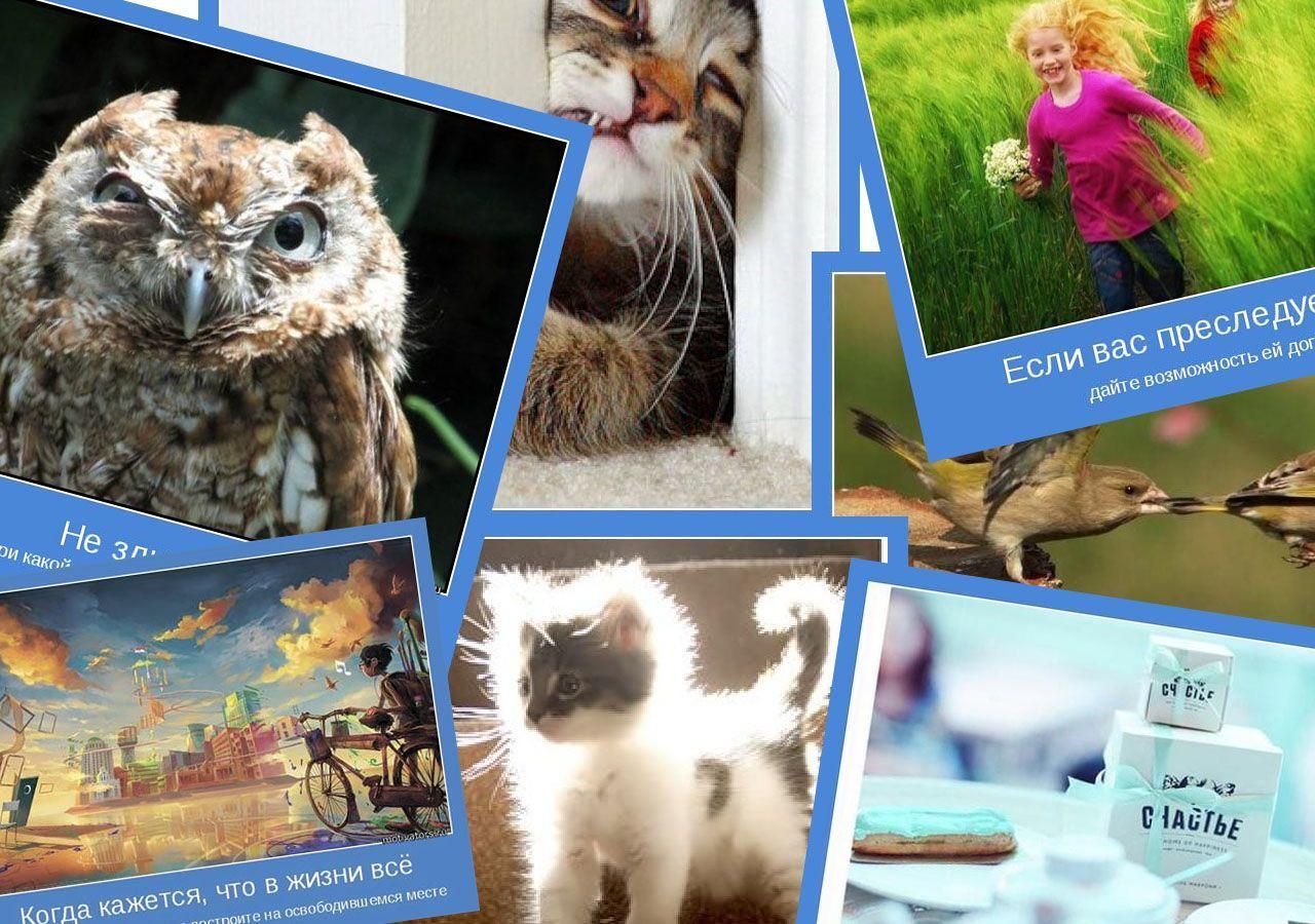 Мотиваторы позитивные и смешные картинки бесплатно фразы мысли смешно