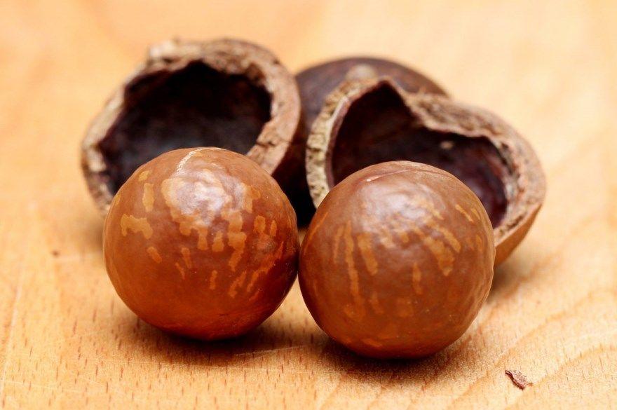 Макадамия орех польза масло купить вред цена полезные свойства отзывы скорлупа за кг косметика маска 1
