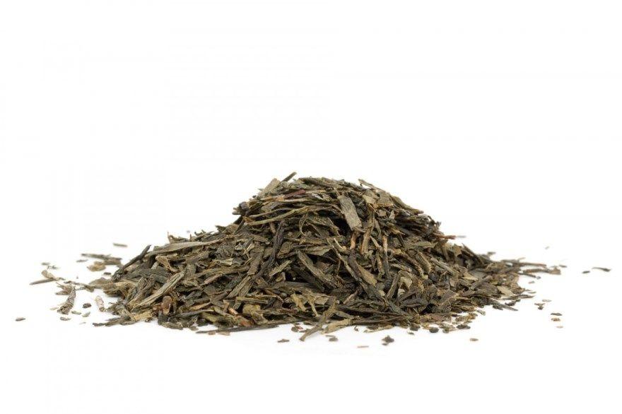 Чай зеленый черный польза пил можно купить вред отзывы повышает давление понижает экстракт сколько похудения сколько молоко имбирь правильный для женщин мужчин