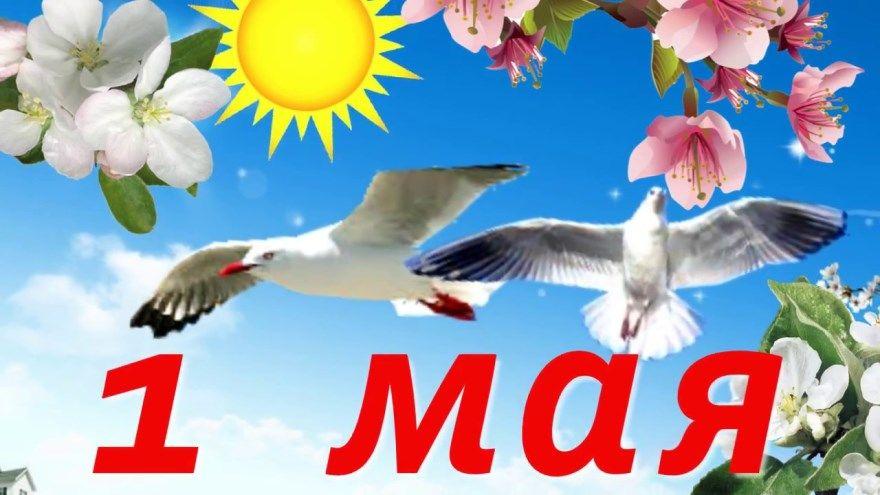 Праздник 1 мая официальное название весны и труда мир труд май картинки открытки первомай бесплатно