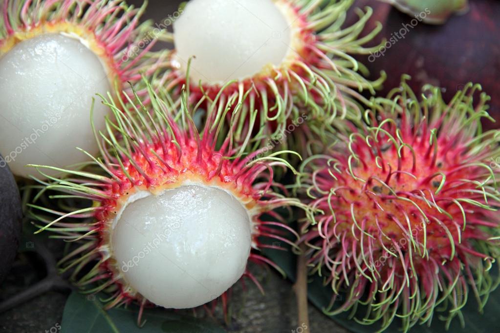 Рамбутан фрукт фото купить косточка москва домашние условия выращивание плоды как вырастить дерево вкус видео дома похож кушать польза вред чистить