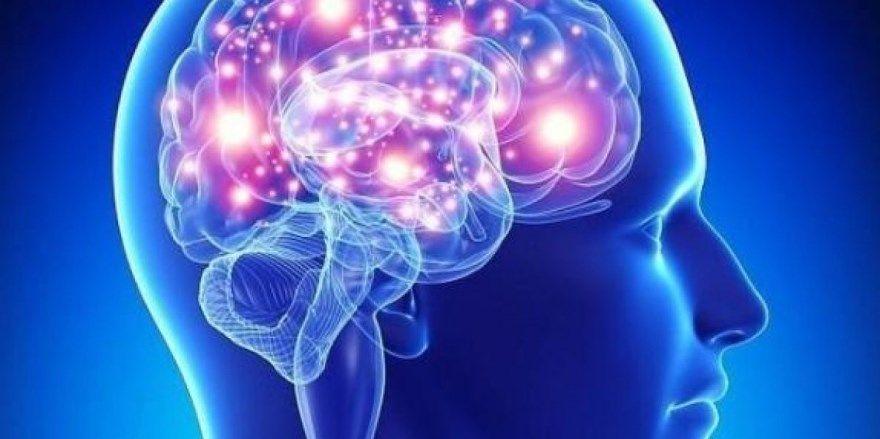 тренировка памяти упражнения развивающие игры внимание таблица Шульте