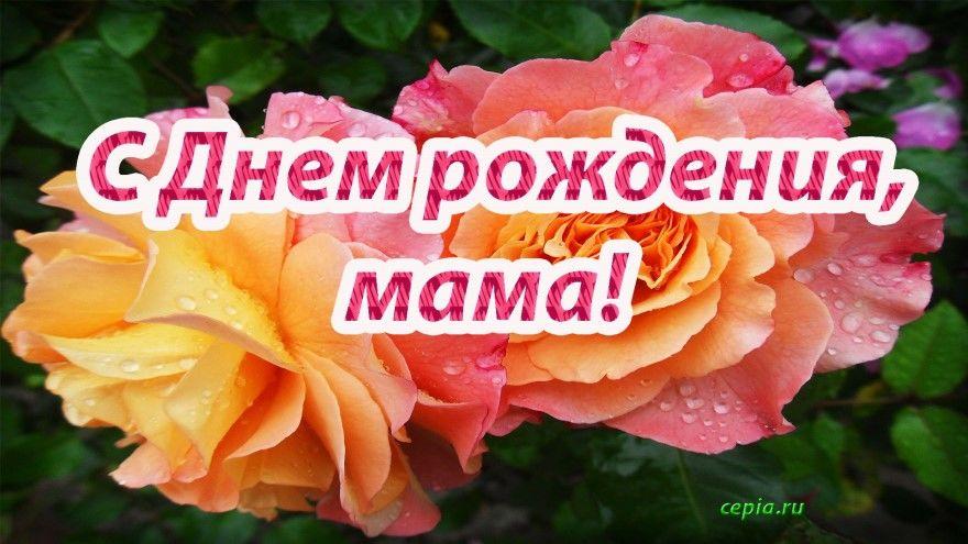 Трогательное поздравление маме С днем рождения. Трогательные, красивые картинки и открытки для родной и любимой мамы. Скачать бесплатно.